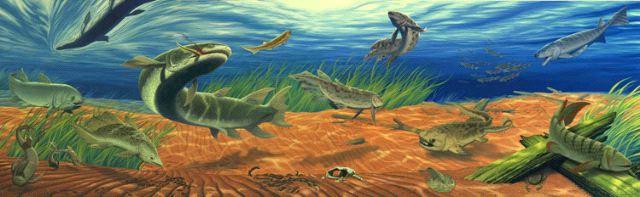 Devonian  Wikipedia