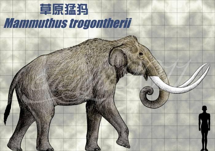 древний слон