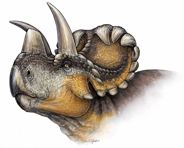 трехрогие динозавры фото