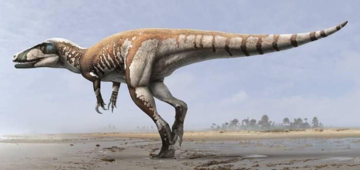 редкие динозавры