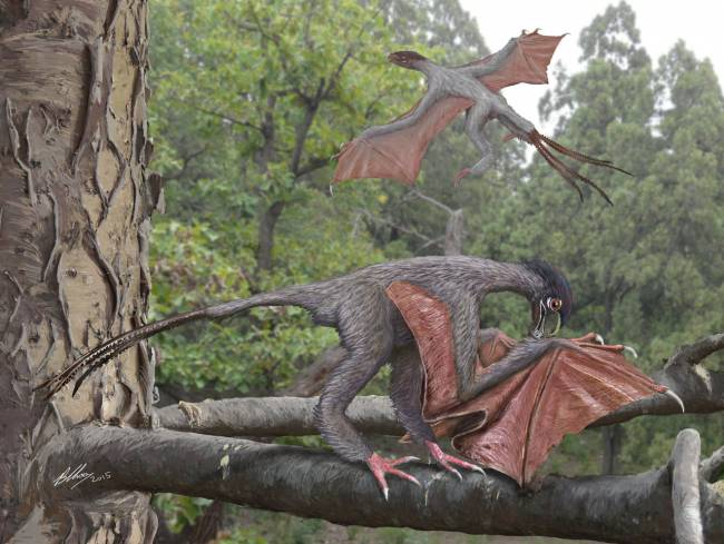 летающий динозавр фото