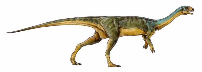 хищные динозавры