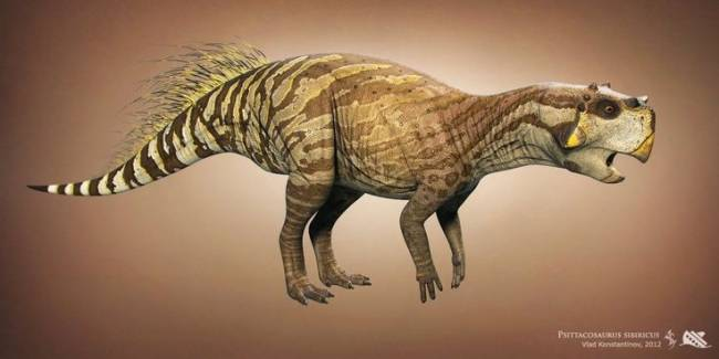 пситтакозавр