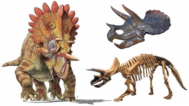 рогатый динозавр фото