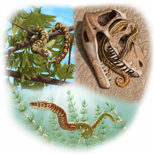 змей питавшиеся динозаврами
