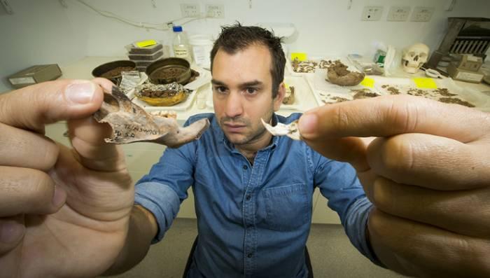 челюсти гигантской крысы