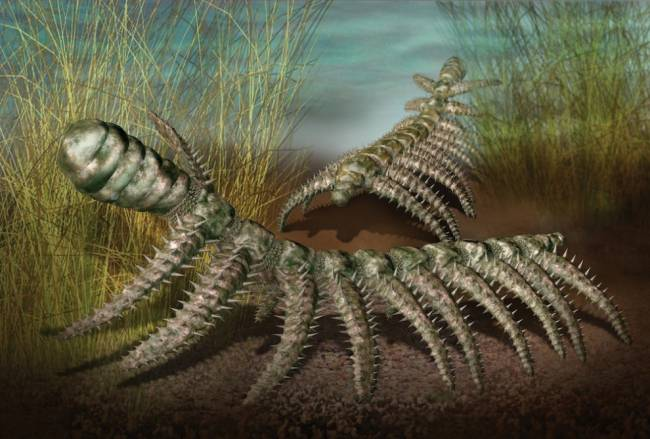 Палеозойская эра
