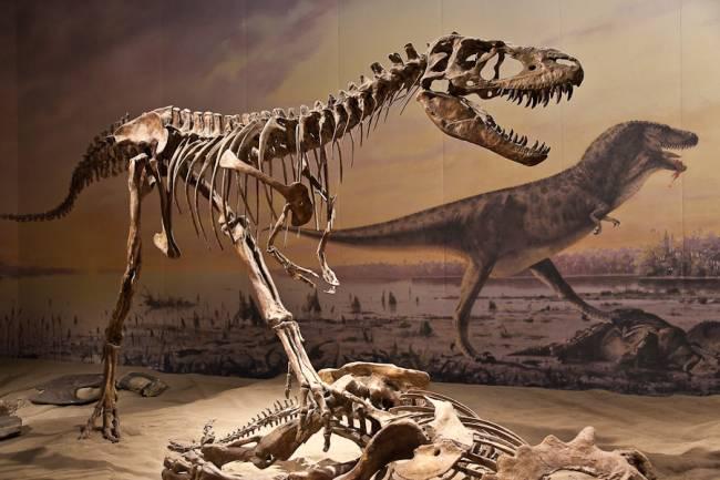 почему вымерли динозавры ответ