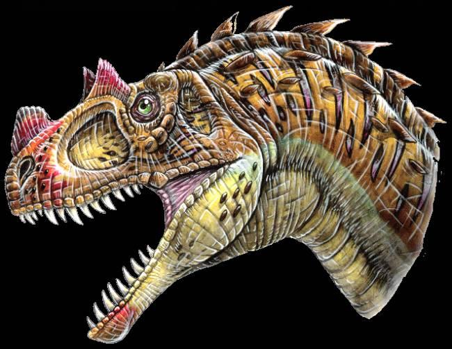 Цератозавр фото