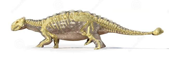 Анкилозавр фото