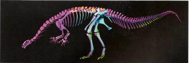 Платеозавр фото