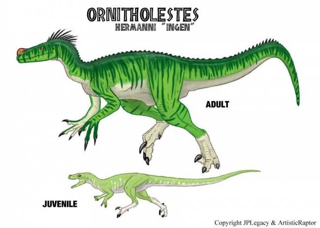 Орнитолест