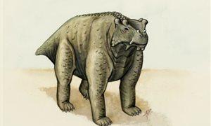 древнее четвероногое существо