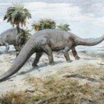 Диплодок (Diplodocus)