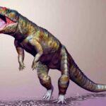 крокодиломорфы
