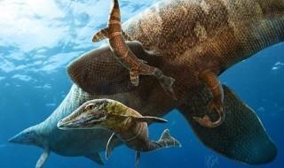 морские рептилии из мезозойской эры