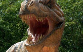 динозавр фото
