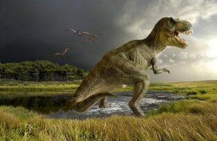 гигантские рептилии