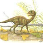 Мусзавр (Mussaurus)