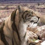 древние саблезубые кошки