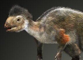 травоядный пернатый динозавр