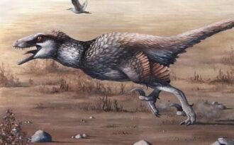 динозавр с перьями