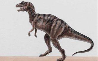 Цератозавр (Ceratosaurus)