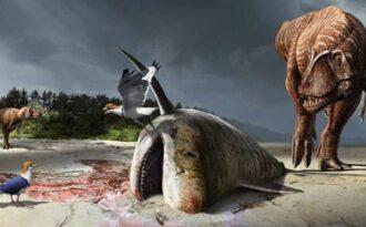 акула эпохи динозавров