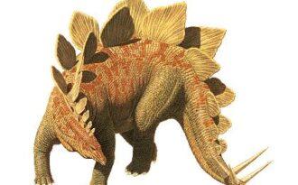 отростки на спине динозавров
