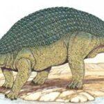 останки динозавра семейства нодозавров