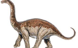 Aустрозавр