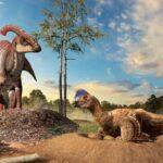 Гнезды динозавров