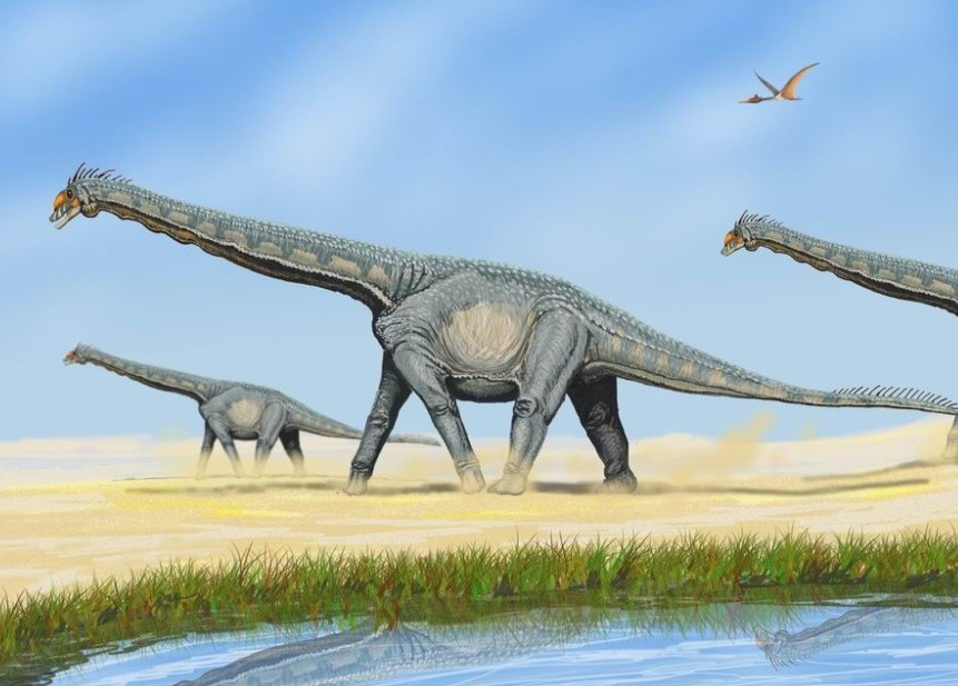 Alamosaurus sanjuanensis