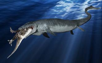 Мозазавр (Mosasaurus)