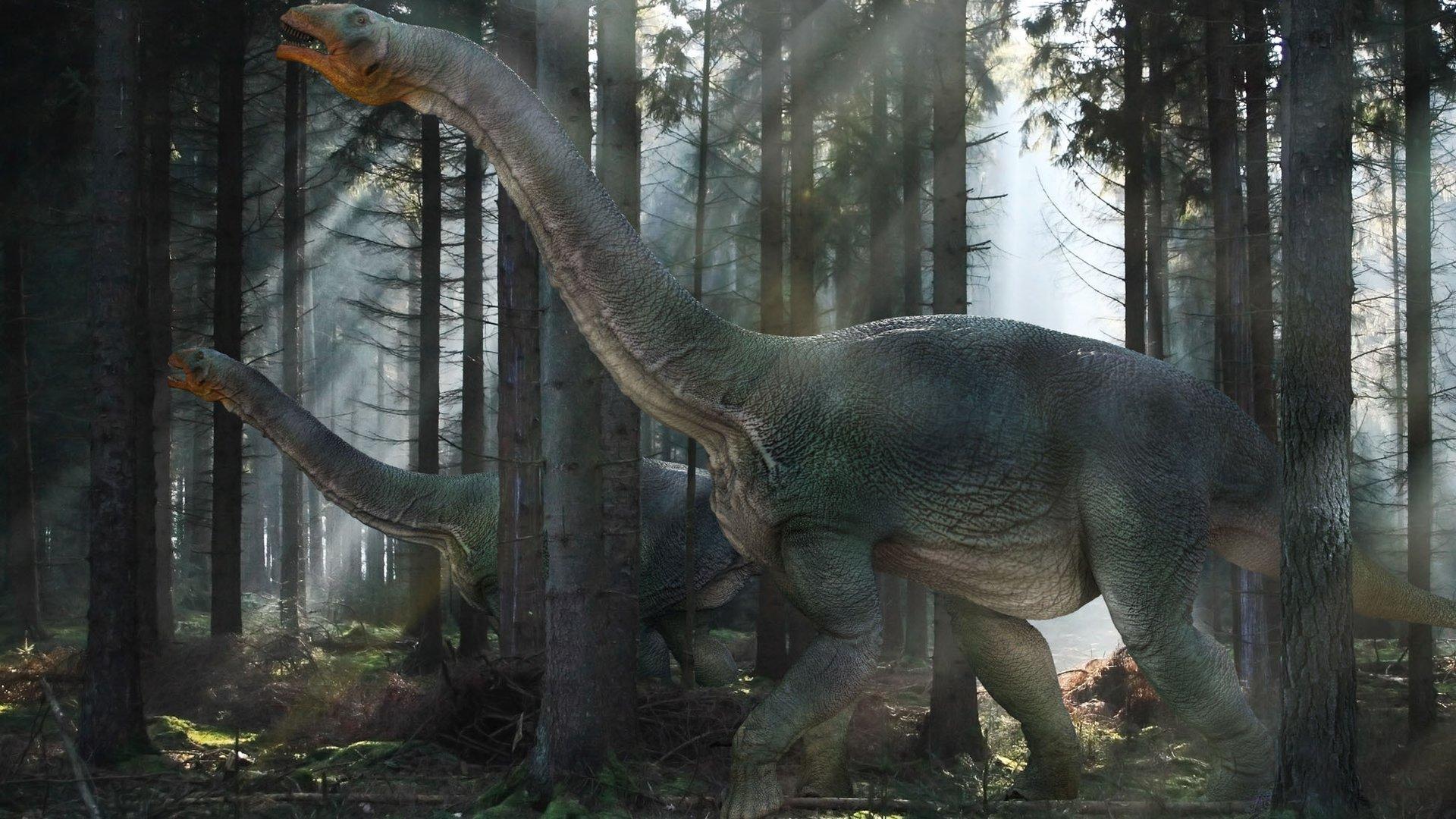 Обои с динозаврами