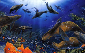 Рождение и развитие океана
