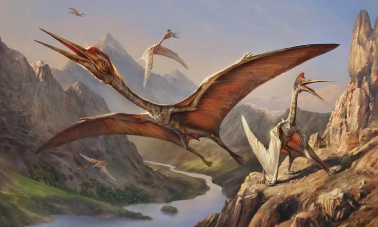 Птерозавры фото