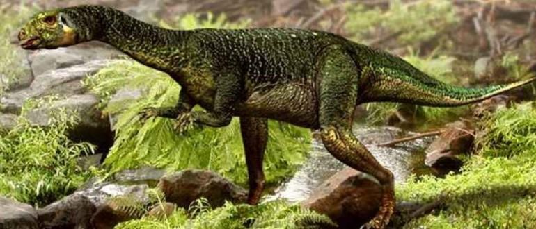 Дриозавр(Dryosaurus)