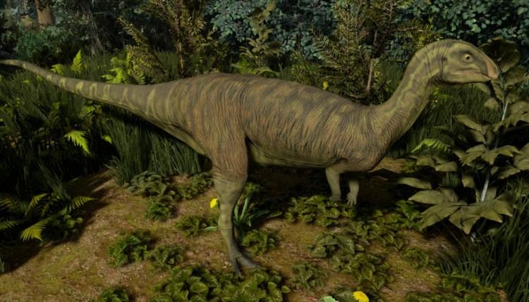 Dryosaurus фото
