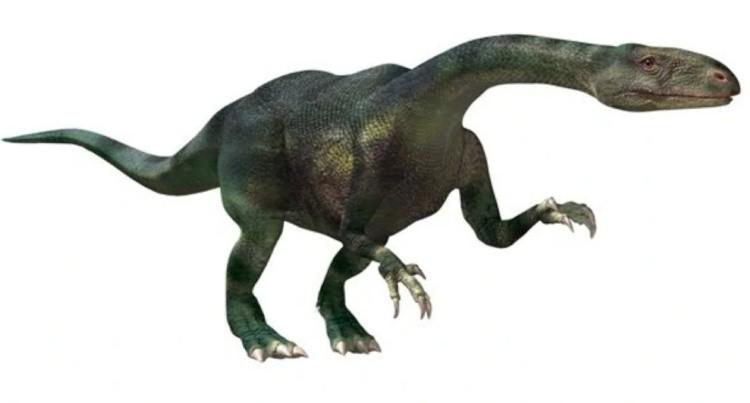 Текодонтозавр (Thecodontosaurus)