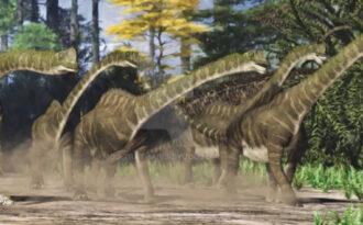 Европазавр(Europasaurus)