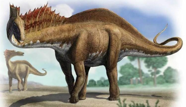 Амаргазаврдинозавр
