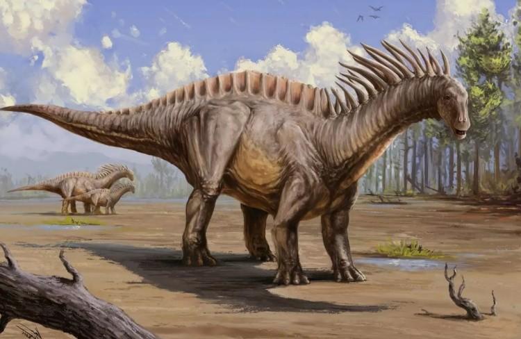 Амаргазавр модель