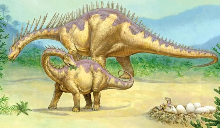Амаргазавр гнездо