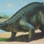 сцелидозавр