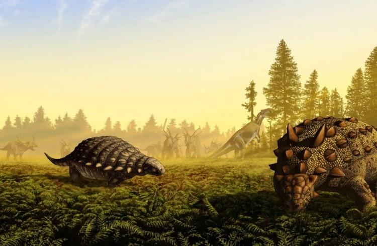 сцелидозавр фото