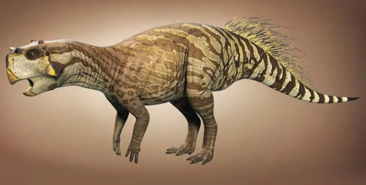 Пситтакозавр картинка