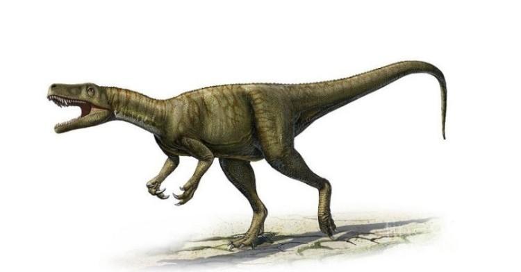 Динозавр Герреразавр