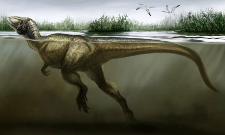Афровенатор динозавр
