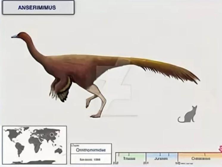 Ансеримим динозавр